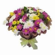 Sakarya 14 şubat sevgililer günü çiçek  Mevsim kir çiçegi demeti