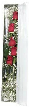 Sakarya kaliteli taze ve ucuz çiçekler   5 adet gülden kutu güller