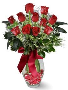 9 adet gül  Sakarya güvenli kaliteli hızlı çiçek  kirmizi gül