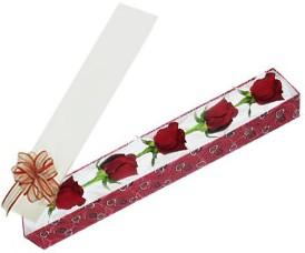 Sakarya güvenli kaliteli hızlı çiçek  kutu içerisinde 5 adet kirmizi gül
