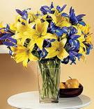 Sakarya çiçek satışı  Lilyum ve mevsim  çiçegi özel