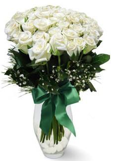 19 adet essiz kalitede beyaz gül  Sakarya yurtiçi ve yurtdışı çiçek siparişi