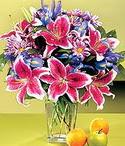 Sakarya çiçekçi mağazası  Sevgi bahçesi Özel  bir tercih