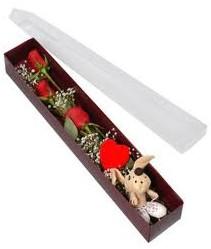 kutu içerisinde 3 adet gül ve oyuncak  Sakarya çiçek yolla