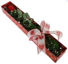 Tek kirmizi gül kutu içerisinde  Sakarya internetten çiçek satışı