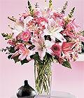 Sakarya çiçek siparişi vermek  Kazablanka biçme vazoda