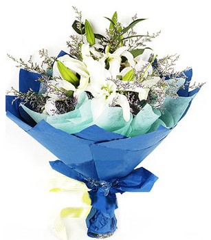 Sakarya çiçek satışı  4 adet dal kazablankadan görsel buket