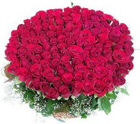 Sakarya internetten çiçek siparişi  100 adet kırmızı gülden görsel buket