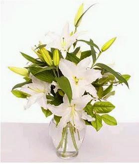 Sakarya uluslararası çiçek gönderme  2 dal cazablanca vazo çiçeği