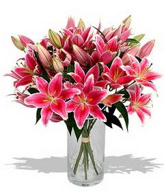 4 dal cazablanca görsel vazosu  Sakarya çiçek mağazası , çiçekçi adresleri