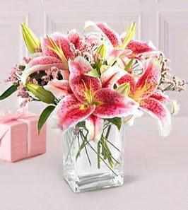 2 dal kazablanka görsel vazosu  Sakarya kaliteli taze ve ucuz çiçekler