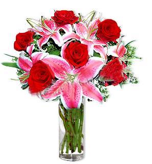 Sakarya cicekciler , cicek siparisi  1 dal cazablanca ve 6 kırmızı gül çiçeği
