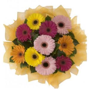 Sakarya online çiçek gönderme sipariş  11 adet karışık gerbera çiçeği buketi