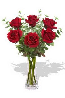 Sakarya çiçek mağazası , çiçekçi adresleri  6 kırmızı gül vazosu