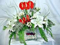 Sakarya çiçekçi mağazası  Anthurim Kazablanka  gül