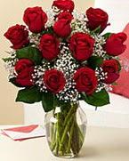 Sevgilime hediye 9 adet 1.ci kalite gül  Sakarya çiçek satışı