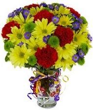 En güzel hediye karışık mevsim çiçeği  Sakarya çiçek servisi , çiçekçi adresleri