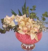 Sakarya çiçekçi mağazası  Dal orkide kalite bir hediye