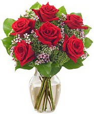Kız arkadaşıma hediye 6 kırmızı gül  Sakarya online çiçekçi , çiçek siparişi