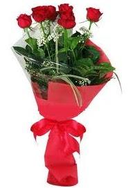 Çiçek yolla sitesinden 7 adet kırmızı gül  Sakarya güvenli kaliteli hızlı çiçek