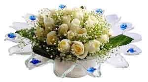Sakarya ucuz çiçek gönder  11 adet Beyaz güller özel cam tanzim