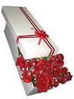 Sakarya 14 şubat sevgililer günü çiçek  11 adet 1.kalite magnum güller