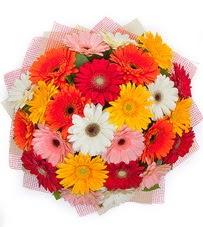 15 adet renkli gerbera buketi  Sakarya çiçekçiler