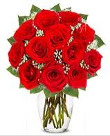 12 adet vazoda kıpkırmızı gül  Sakarya çiçek gönderme sitemiz güvenlidir