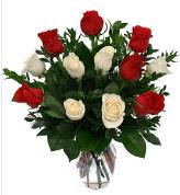 Vazo içerisinde 6 kırmızı 6 beyaz gül  Sakarya çiçek servisi , çiçekçi adresleri