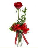 vazo içerisinde 1 adet kırmızı gül  Sakarya 14 şubat sevgililer günü çiçek