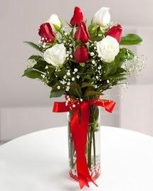 5 kırmızı 4 beyaz gül vazoda  Sakarya çiçek yolla