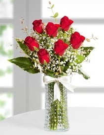 Cam vazoda 7 adet kırmızı gül  Sakarya hediye sevgilime hediye çiçek