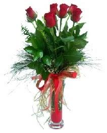 vazo içerisinde 5 kırmızı gül  Sakarya internetten çiçek satışı