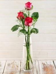 Cam içerisinde 3 kırmızı gül  Sakarya anneler günü çiçek yolla