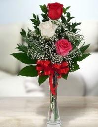 Camda 2 kırmızı 1 beyaz gül  Sakarya çiçek online çiçek siparişi