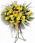 Sakarya çiçekçiler  Sari kazablanka Ferforje
