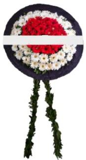 mozele çiçeği  Sakarya çiçek , çiçekçi , çiçekçilik
