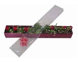 Sakarya çiçek satışı   6 adet kirmizi gül kutu içinde