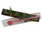 Sakarya çiçek servisi , çiçekçi adresleri  3 adet gül.kutu yaldizlidir.