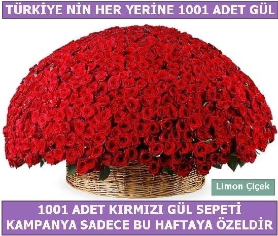 1001 Adet kırmızı gül Bu haftaya özel  Sakarya online çiçek gönderme sipariş