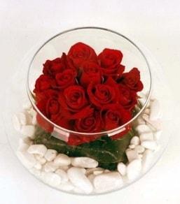 Cam fanusta 11 adet kırmızı gül  Sakarya uluslararası çiçek gönderme