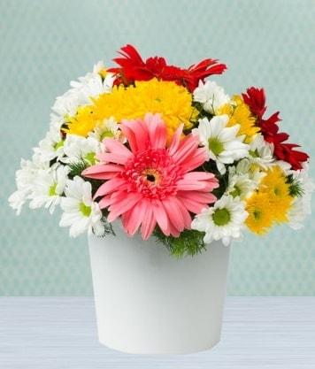 Seramik Vazoda Gelbera ve Papatya  Sakarya uluslararası çiçek gönderme