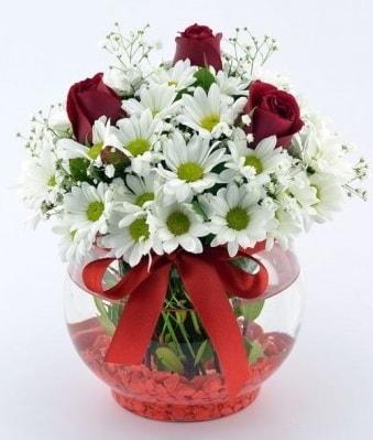 Fanusta 3 Gül ve Papatya  Sakarya güvenli kaliteli hızlı çiçek
