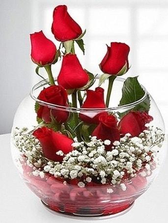 Kırmızı Mutluluk fanusta 9 kırmızı gül  Sakarya kaliteli taze ve ucuz çiçekler