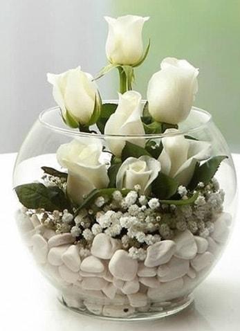 Beyaz Mutluluk 9 beyaz gül fanusta  Sakarya kaliteli taze ve ucuz çiçekler