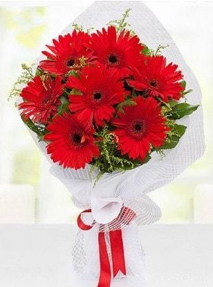 Kırmızı Gelbera Buketi  Sakarya online çiçekçi , çiçek siparişi