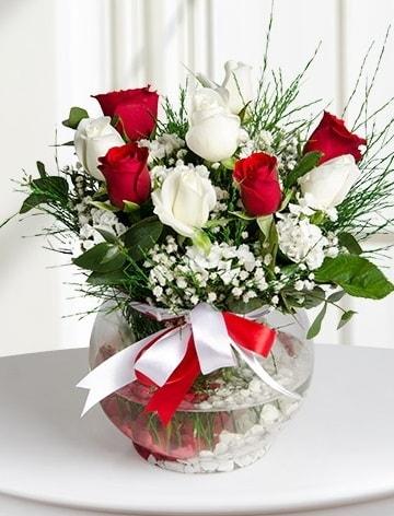 Aşk Küresi  5 beyaz 5 kırmızı gül fanusta  Sakarya güvenli kaliteli hızlı çiçek