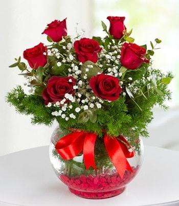 fanus Vazoda 7 Gül  Sakarya hediye sevgilime hediye çiçek
