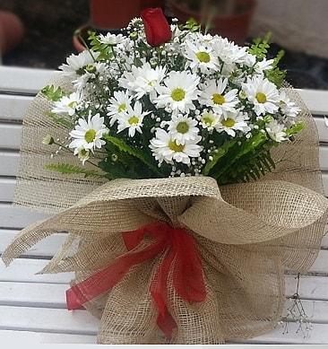 Papatya 1 adet kırmızı gül buketi  Sakarya yurtiçi ve yurtdışı çiçek siparişi
