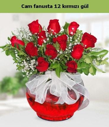 Cam içerisinde 12 adet kırmızı gül  Sakarya güvenli kaliteli hızlı çiçek